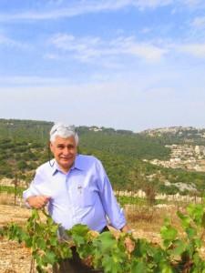 Jacques Capsouto vignes