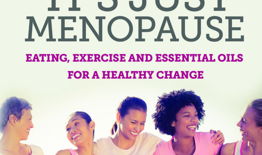 No Sweat! It's Just Menopause on Your Book Your Brand Your Business